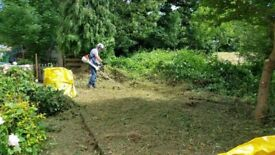 Garden maintenance-Lawn Mowing - Grass cutting -Garden Tidy up- Gardening services - Local gardener