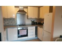 1 Bedroom spacious apartment in newly built development available to rent. IG1