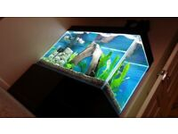 Modern Optiwhite Fish Tank / Aquarium with Stand, Lid CLEANED in excelent condition!