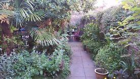Secure 1 BEDROOM CITY CENTRE flat. Accessed via Secret walled garden.