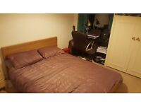 Double room to let in a 2 bedroom flat BECKENHAM