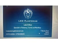 Looking for a plasterer?