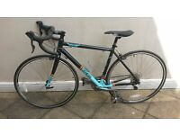 MENS ROAD BIKE - GENESIS VOLANT