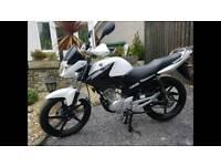 2015 Yamaha YBR 125 cc learner legal