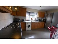 double en-suite room available in charminster