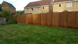 FENCING SUPPLIED & ERECTED