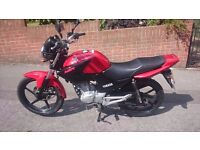 YAMAHA YBR 125cc 2013 REG - IN EXCELLENT UNMARKED CONDITION