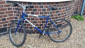 Ridge Back Mountain Bike Sport Hybrid