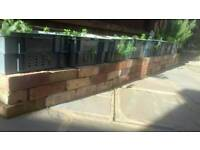 Reclaimed full and half LBC cleaned up bricks