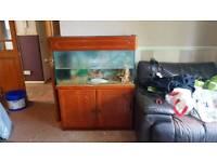 Fish tank and cabnit