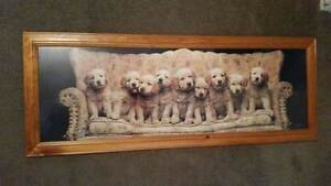Print of Puppies on a Couch Ballarat Central Ballarat City Preview