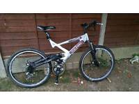 Rayleigh Lithium FS Dual suspension moubtain bike