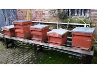 x50 National bee hives. £160 Each