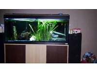 4ft jewel roma tank with stand 240 with extras