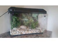 Hagen Tropiquarium Fish Tank