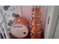 Yamaha Maple Custom Absolute Drums.