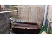 Bird Cage Parrot Medium Sized