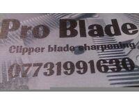 Clipper blade sharpening