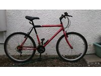 Mens Atlantic Challenge bicycle
