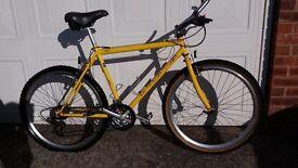 Gents Claude Butler Mountain Bike