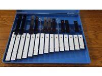 Junior Glockenspiel in Case 25 Notes