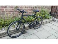 Carrea bike