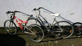 Giant and Apollo bike