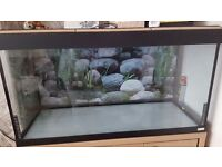Fish or turtle tank with light oak cabinet