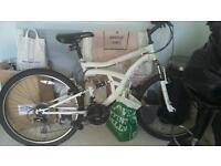 Revo flyer mountain bike