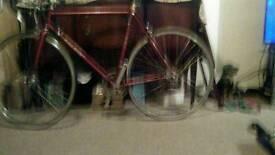 Men's racing bike