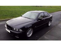 2002 BMW 530i SPORT E39 / INDIVIDUAL CHAMPAGNE EDITION / FINAL EDITION ONLY 150 EVER MADE