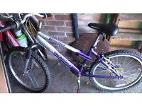 Magna Vienna Mountain Bike in Purple/Silver