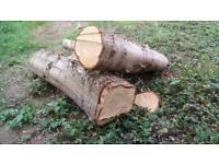 Free fire wood firewood
