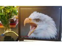 Computer monitor, screen size 17 inches diagonally Flat screen SHARP