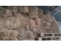 15 Bales of 2nd grade hay