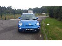 Volkswagon Beetle 02 plate