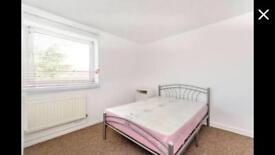 Double room available in Putney area