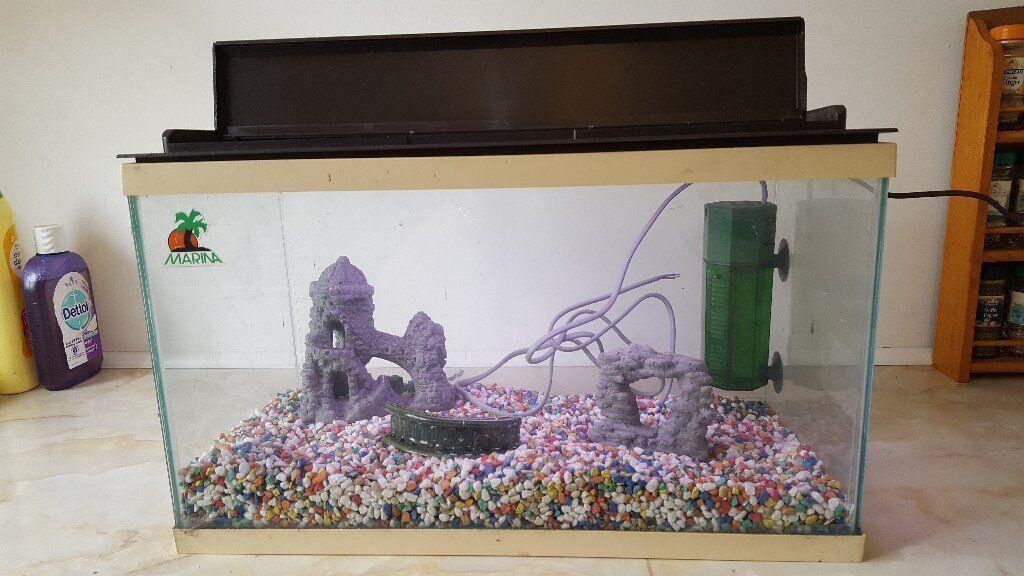 Fish Tank - Unused