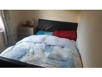 specious bedroom available for rent