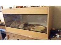 Vivarium including accessories L = 88 cm W = 38 cm H = 45 cm suitable for snakes, lizzards etc