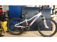 Girls 24inch mountain bike £50.00