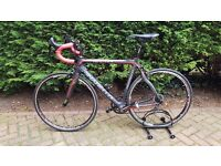 Pinarello Razha Veloce 2014 Carbon Road Bike