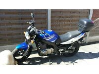 Suzuki 500GS LOWERED 12 MONTH MOT LOW MILES GREAT RUNNER