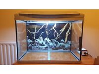 Beautiful almost new (2 weeks old) aquarium for sale