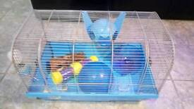 Hamster cage plus accessories