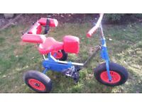 Supa Tricycle Trike mobility aid bike fixed gear Durham postage