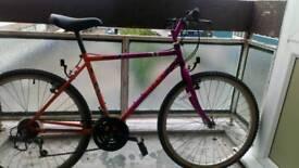 Giant chirago mountain bike