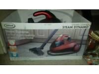 Steam cleaner dynamo