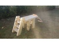Dog/puppy training/grooming table, with ladder & bridge