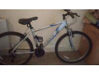 Apollo Verge Push Bike